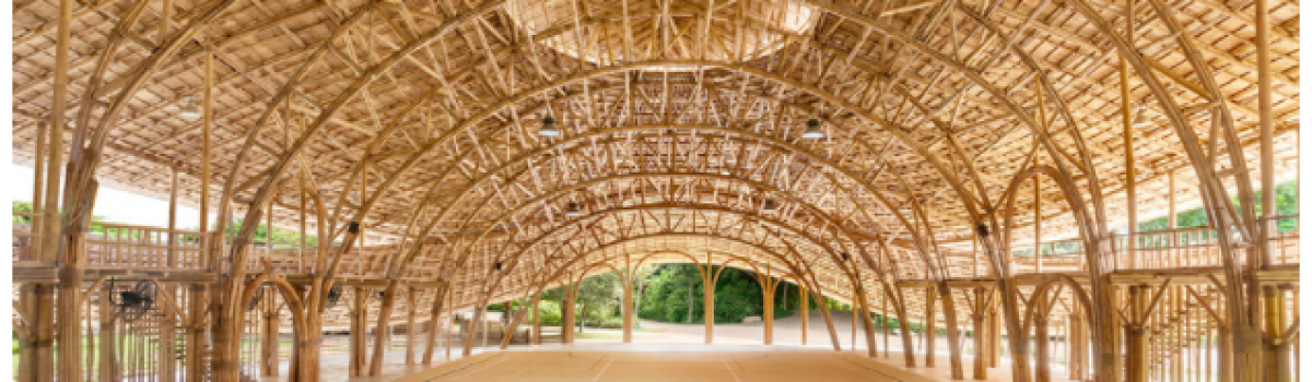 Gym Built from Bamboo, Solar+Storage for Hawaii Schools, & Solar Flowers